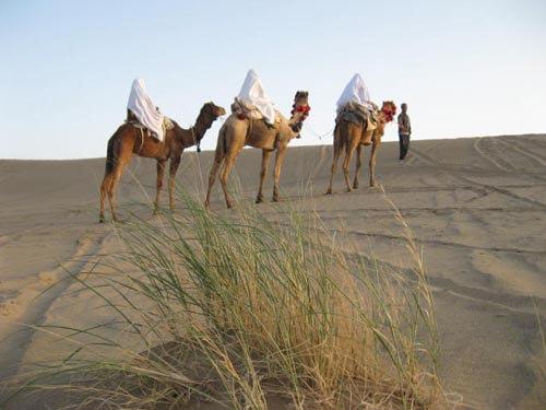 White tent 2 - چادر سفید در اعماق تاریخ