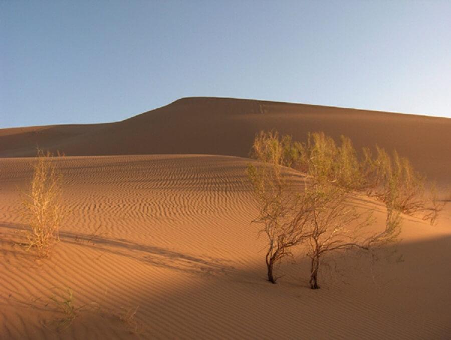 desert 3 - تپه های ماسه ای شهر ورزنه