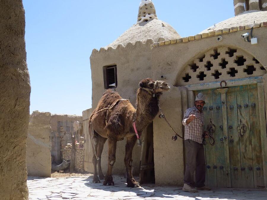 Camel mill 4 - آسیاب شتر ورزنه