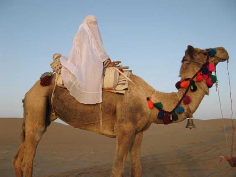 White tent feathere - چادر سفید در اعماق تاریخ