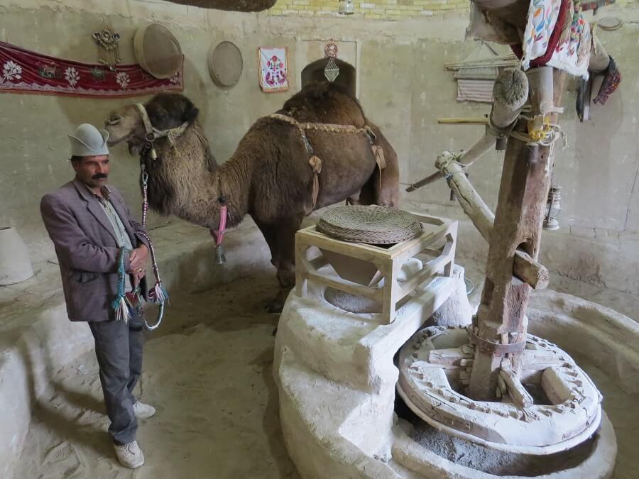 Camel mill 3 - آسیاب شتر ورزنه